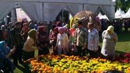 Pemerintah Dorong Florikultura RI Tembus Pasar Internasional