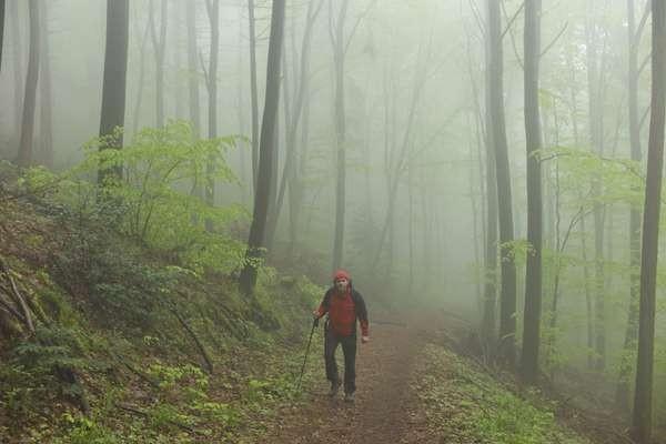 Kabut pun sering turun dan mempersulit jarang pandang. (Thinkstock)