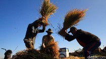 Petani Bisa Gadaikan Traktor dan Pompa Air di Pegadaian