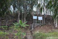 Di Situs Pasir Lulumpang sering terdengar suara gamelan (Hakim Ghani/detikTravel)