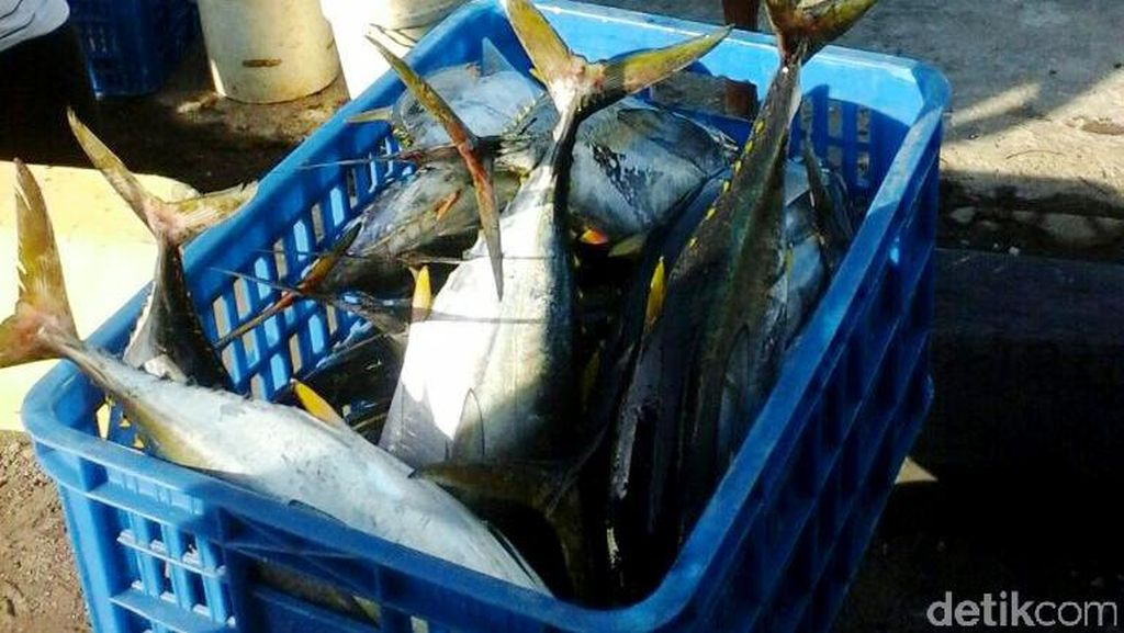 Pemerintah Bidik Tambah Investasi Perikanan Jepang di RI Jadi Rp 1 T