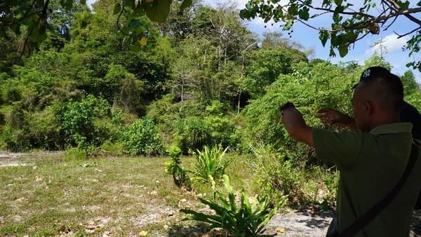 Tidak hanya bisa berenang atau berswafoto, Pulau Kunti juga bisa menjadi spot mancing. Selain itu, hutan yang ada di Pulau Kunti juga terdapat flora dan fauna yang langka dan dilindungi (Mukhlis/detikTravel)