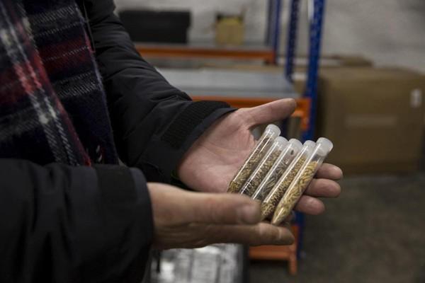 Di Svalbard Global Seed Vault tersimpan lebih dari dua juta benih tanaman (Anna Filipova/Reuters)