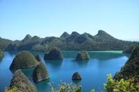 Geser ke Papua Barat, inilah primadona bawah laut Indonesia yakni Raja Ampat. Raja Ampat menyimpan sekitar 540 jenis karang yang sudah diidentifikasi. Di dalamnya hidup sekitar 1.511 spesies ikan dan 700 jenis moluska (Feni Novida Saragih/dTraveler)