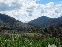 Lorentz Adalah Misteri di Papua