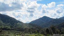 Mengenal Dua Desa Cantik Bebas Corona di Papua