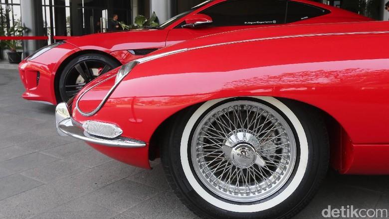 Jaguar (Foto: Ari Saputra)