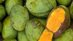 Mangga dan Manggis dari Jabar Bidik Pasar Jepang