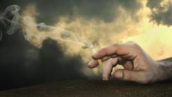 Masih Banyak yang Belum Paham, Ini Dampak Merokok Pada Sistem Tubuhmu