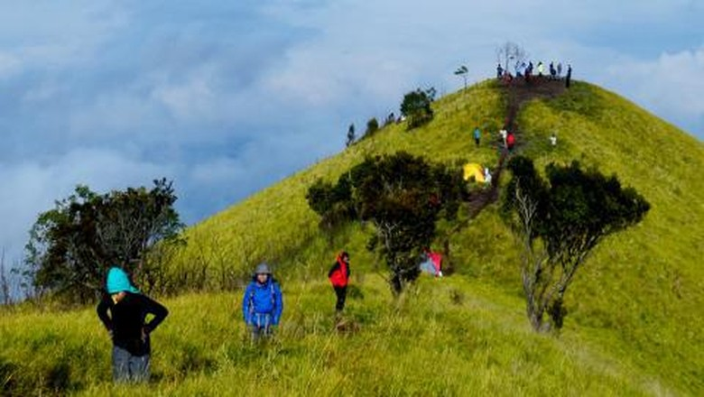 Ilustrasi Gunung Merbabu  (Jamal_mahfudz/dTraveler)