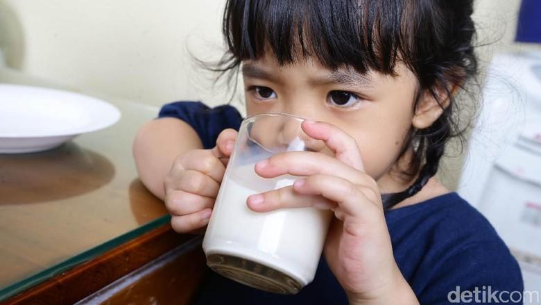 4 Perbedaan Susu Pasteurisasi dan Susu UHT/ Foto: Hasan Al Habsy