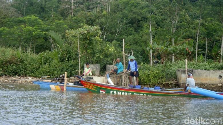 Kampung Laut di Cilacap (Arbi/detikcom)