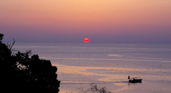 Toyama Bay adalah teluk terbesar ketiga di Jepang, terletak di sebelah utara Pulau Honshu. Teluk ini terkenal oleh fenomena Firefly Squid, cumi-cumi yang bisa menyala dalam gelap (Dok. BBC)