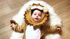 Foto: Lucunya Saat si Kecil Berkostum Hewan