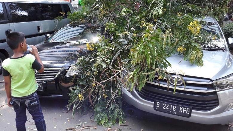 dua mobil rusak tertimpa pohon di kuningan. Black Bedroom Furniture Sets. Home Design Ideas
