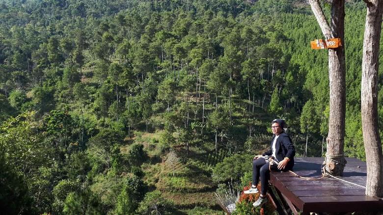 The Lodge Maribaya di Bandung (Mukhlis Dinillah/detikTravel)