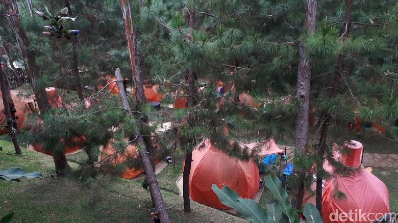 Foto: Kemping di The Lodge Maribaya, Bandung Barat (Mukhlis Dinillah/detikTravel)