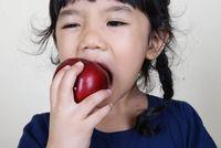 Mau Liburan Keluar Kota? Jangan Lupa Bawa Bekal 6 Makanan & Minuman untuk Si Kecil