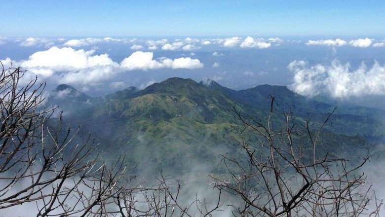 Pemadaman Api di Puncak Gunung Lawu Terkendala Kabut