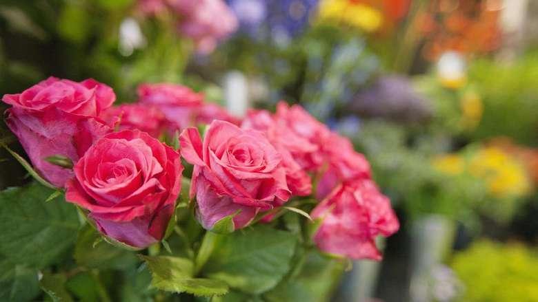 Harum bunga mawar dapat membuat Anda dan pasangan merasa lebih rileks dan tenang. Jika tenang dan rileks, kenikmatan bercinta pun akan lebih mudah didapatkan. (Foto: Thinkstock)