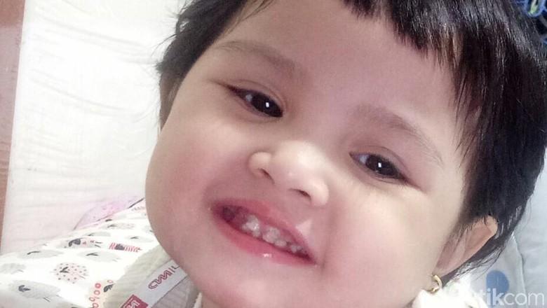 Kegiatan Sederhana Ini Bisa Cegah Gigi Anak Berlubang/Foto: dok.HaiBunda