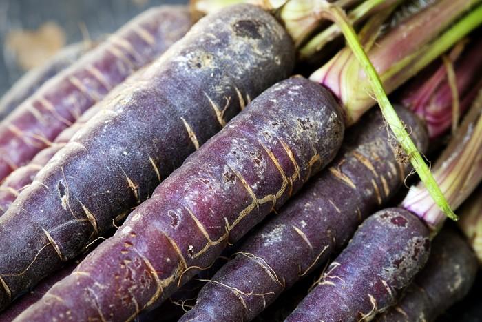 Wortel ungu mengandung antosianin tinggi dan karotenoid pro-vitamin A yang merupakan antioksidan terkuat. Wortel ungu juga dapat membantu mengatur berat badan dan mengontrol glukosa dalam darah. Foto: Thinkstock