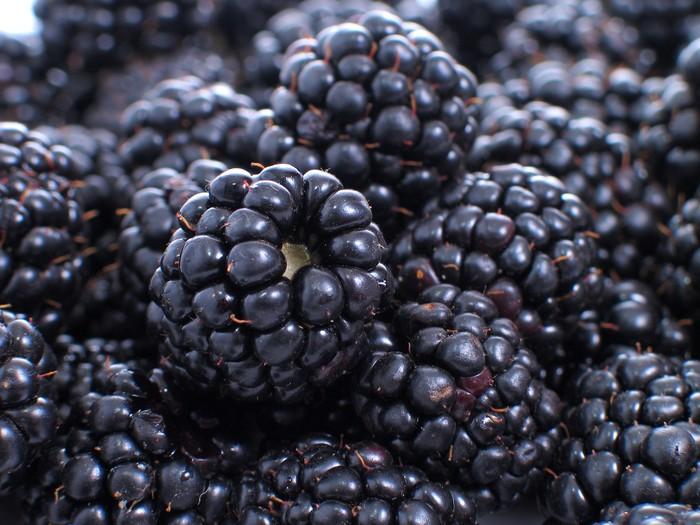 Blackberry membantu mencegah penuaan dan sangat bermanfaat bagi mereka yang mengalami rambut rontok. Selain itu, blackberry juga membantu kulit bersinar dan tetap aktif. Foto: Thinkstock