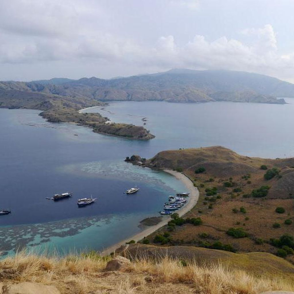 Anggota DPR: Pemerkosaan di Labuan Bajo Permalukan Pariwisata