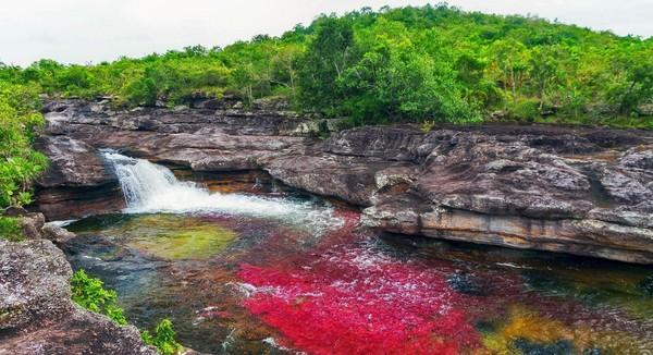 Adapun waktu terbaik untuk datang dan menikmati keindahan sungai ini yaitu Juli-Desember. Di saat musim panas inilah, alga dan lumut tumbuh semakin banyak dengan warna yang beragam.(Foto: Eric Mohl/BBC Travel)