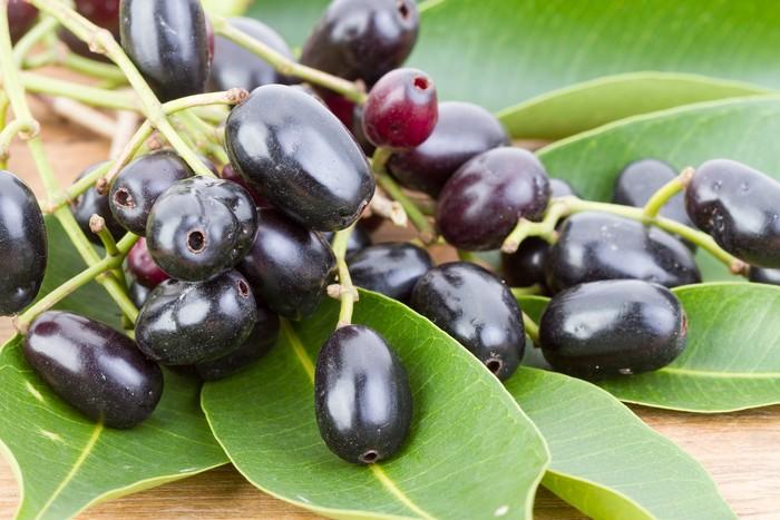 Plum, jenis buah yang masih jarang diketahui orang ini juga memiliki manfaat kesehatan bagi tubuh, salah satunya menangkal radikal bebas. Foto: Thinkstock