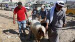 Rayakan Idul Adha, Warga Palestina Ikut Berkurban
