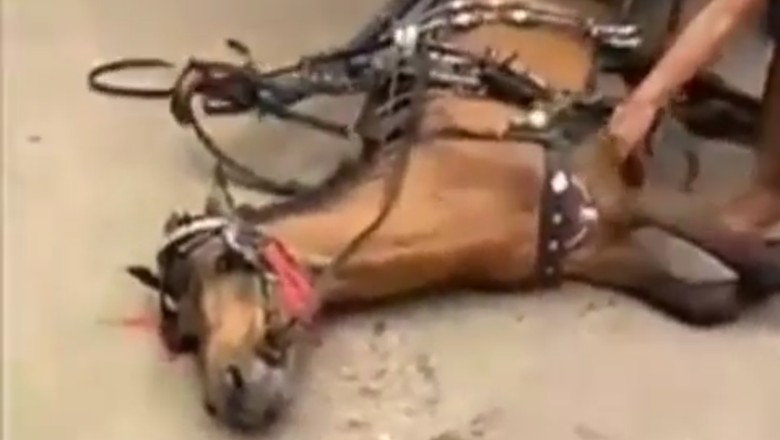 Kuda Kelelahan Tetap Dicambuk, JAAN: Jangan Anggap Sebagai Robot