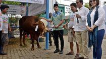 Demi Negara! Jangan Potong Kurban Dekat Pacuan Kuda Pulomas