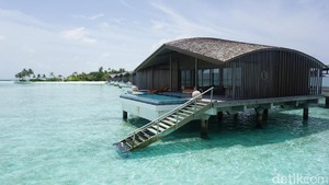 Bulan Madunya Para Seleb: Maldives