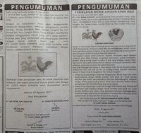 Pengumuman tentang Lukisan Ayam Jago.