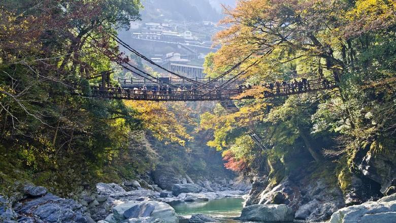 Pulau Shikoku yang cantik (Thinkstock)