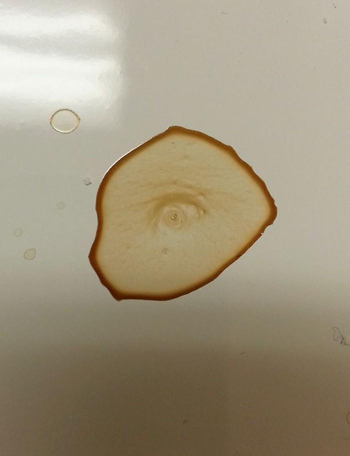 Tumpahan sedikit kopi hasilkan pola istimewa. Tak lama ditinggal, tumpahan kopi ini tampilkan gambar mirip mata. Foto: Istimewa