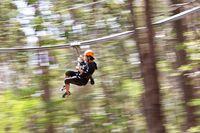 Flying Fox Rasa Roller Coaster, Jantung Mau Copot!