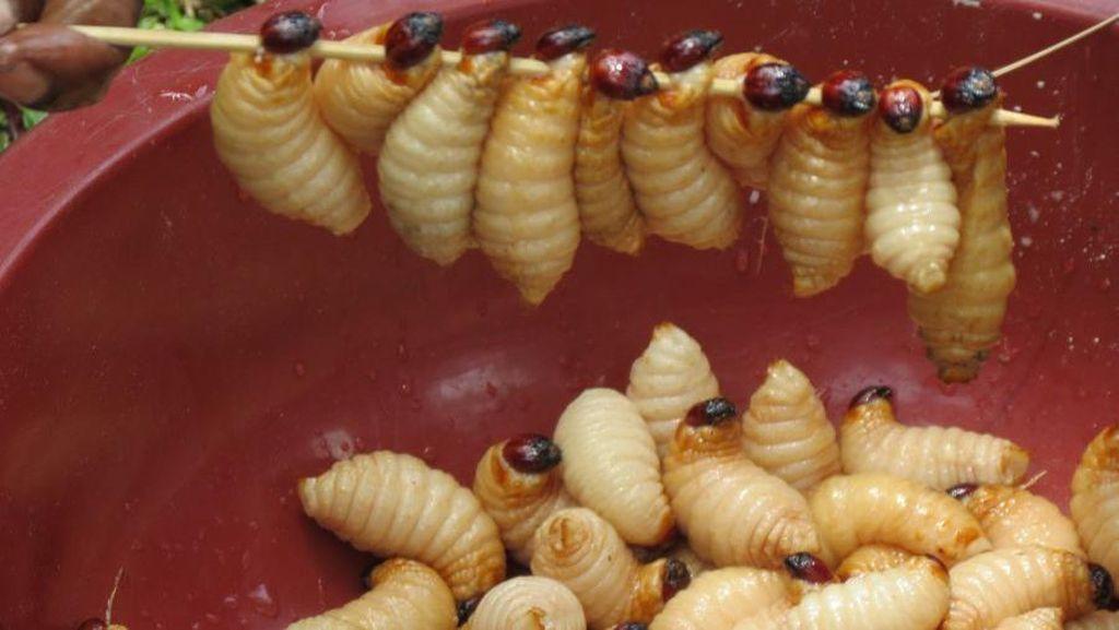 Berani Coba? Makanan Aneh, Bola Mata Tuna hingga Sup Telur Semut!