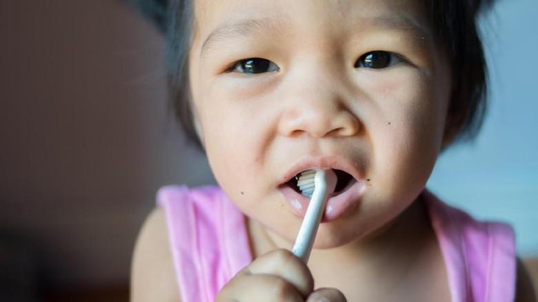 Kesalahan yang Sering Dilakukan Anak Saat Gosok Gigi Sendiri 00a408f7e5