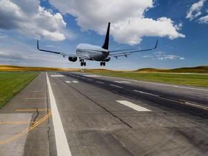 Ada Sapi Liar di Landasan Bandara India, Penerbangan Dialihkan
