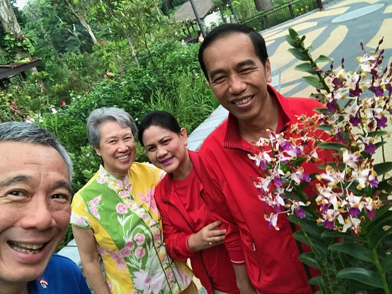 Jokowi Bertemu PM Singapura: Tanam Pohon Hingga Bahas Kerja Sama