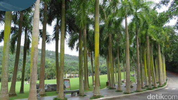 Taman Qingxiu yang berada tepat di Kota Nanning