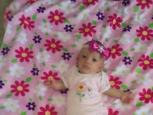 Tragedi Bayi Debora, Djarot: RS Wajib Bantu Siapapun Juga!
