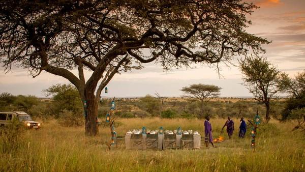 Tidak hanya berenang, traveler juga dapat menikmati santapan makan malam di tengah alam Tanzania yang eksotis. Bukan main indahnya! (Four Seasons)