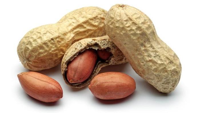 Kacang mengandung banyak nutrisi penting (Foto: iStock)