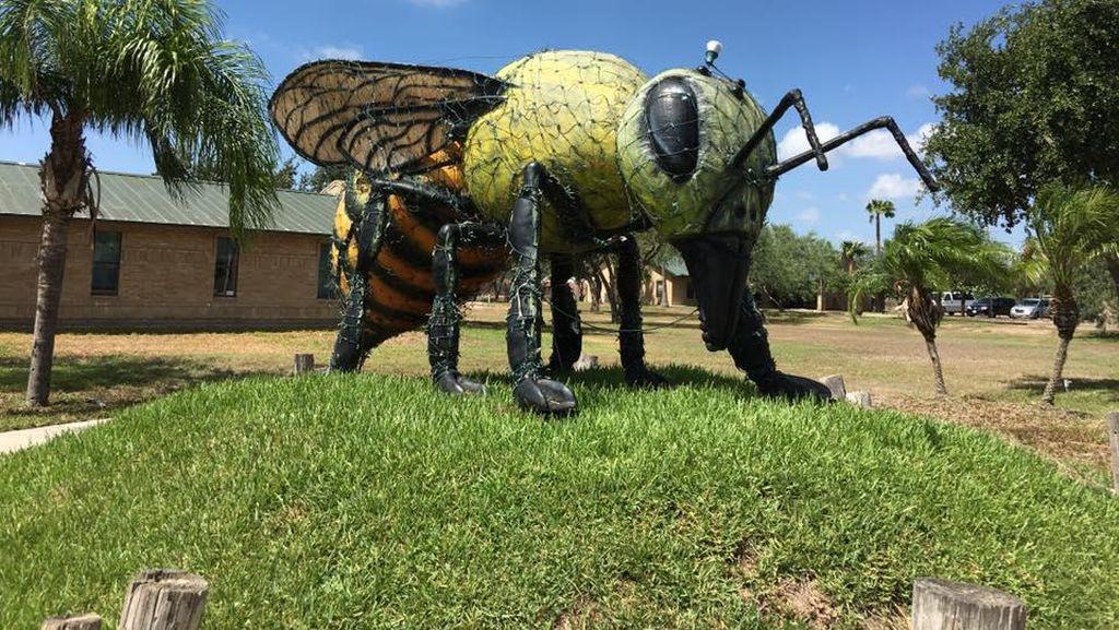 Kisah Kota yang Pernah Porak Poranda Diserang Lebah