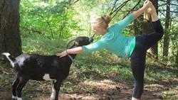 Hewan peliharaan bisa disebut teman terdekat di rumah. Bagaimana rasanya melakukan yoga bersama hewan peliharaan? Simak di sini: