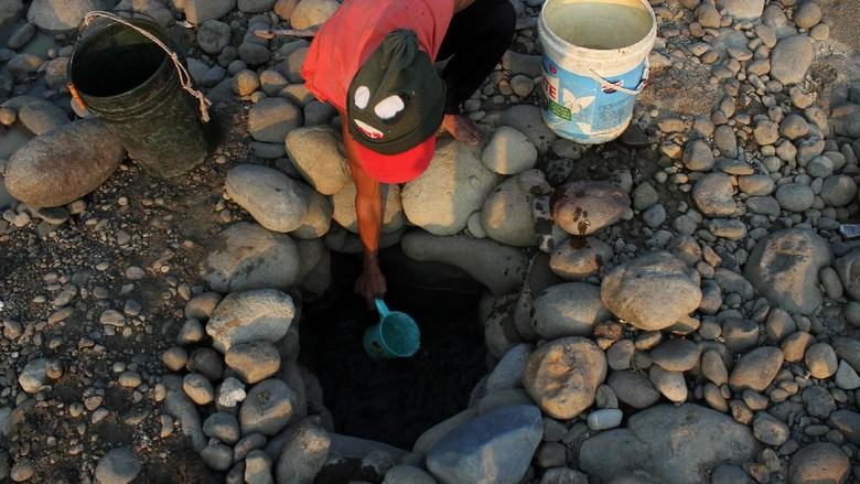 Potret Sulitnya Cari Air Akibat Kekeringan: Dari Bekasi Hingga NTT
