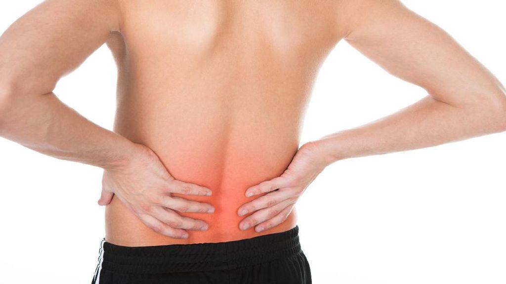 Sakit di Punggung Bagian Bawah, Sakit Biasa Atau Gejala Sakit Ginjal?